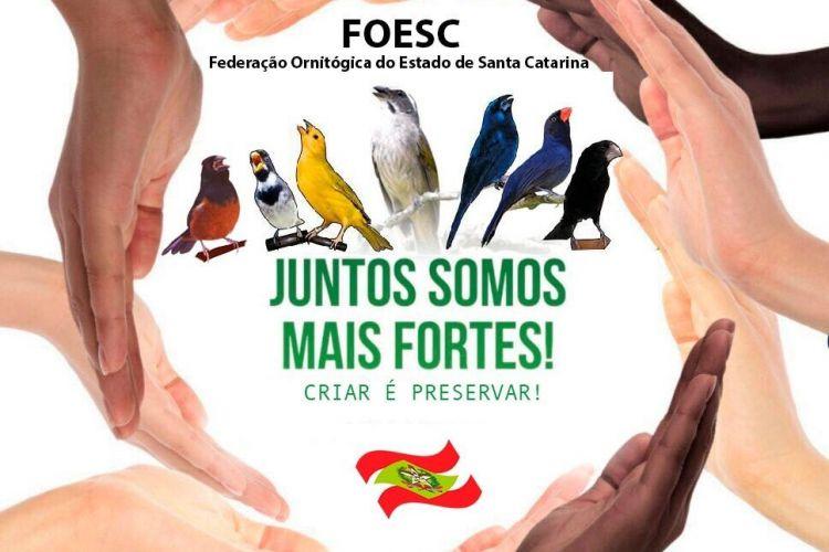 ANUIDADE ANO 2019A ACPSI- Associação dos Criadores de pássaros Silvestres de Ituporanga, comunica a todos ao sócios que já se encontra em aberto para pagamento a taxa do IBAMA bem como  Anuidade 2019